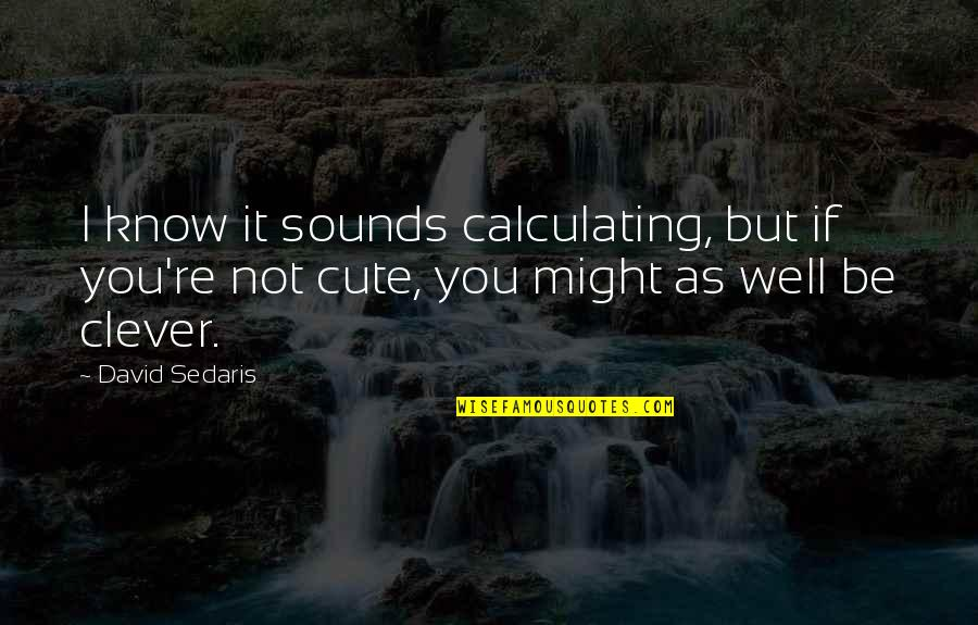 Sounds Quotes By David Sedaris: I know it sounds calculating, but if you're