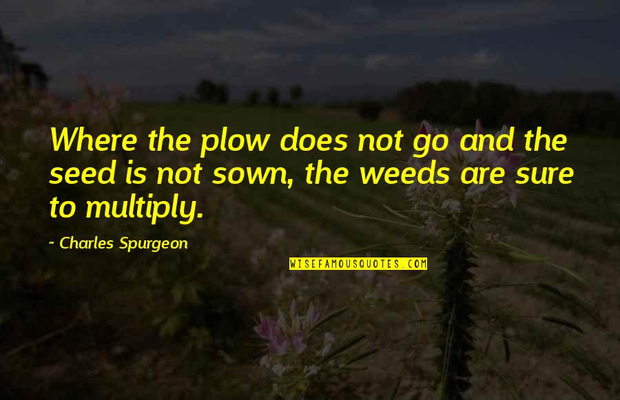 Sown Quotes By Charles Spurgeon: Where the plow does not go and the