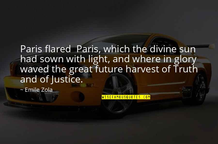 Sown Quotes By Emile Zola: Paris flared Paris, which the divine sun had