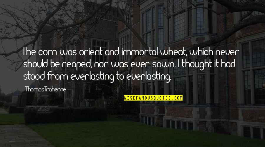 Sown Quotes By Thomas Traherne: The corn was orient and immortal wheat, which