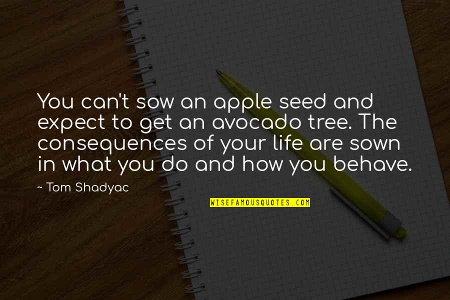 Sown Quotes By Tom Shadyac: You can't sow an apple seed and expect