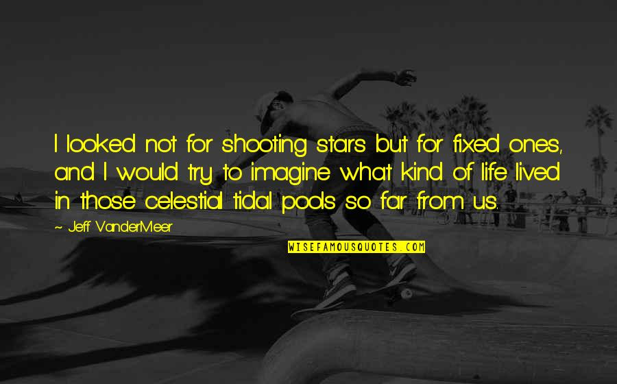 Space And Life Quotes By Jeff VanderMeer: I looked not for shooting stars but for
