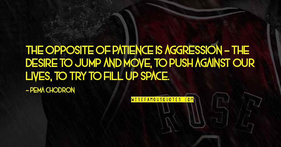 Space And Life Quotes By Pema Chodron: The opposite of patience is aggression - the