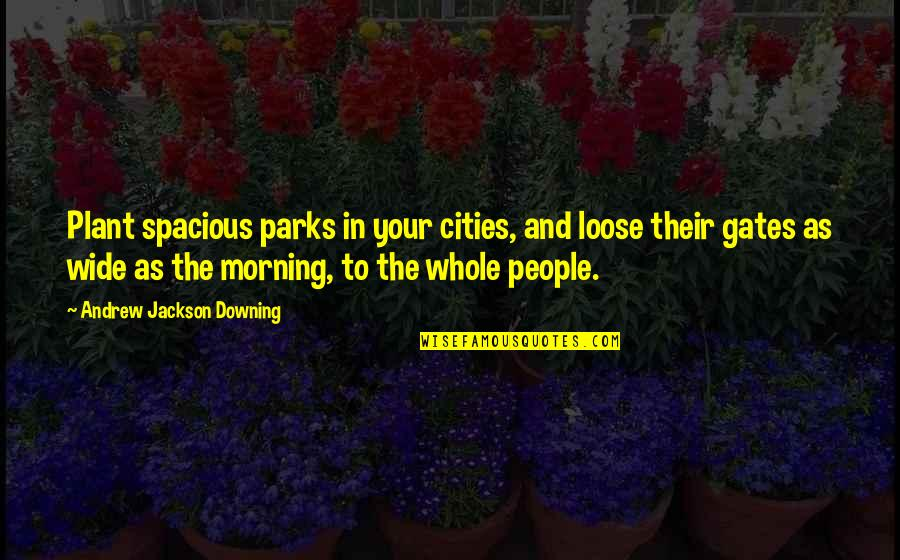 Spacious Quotes By Andrew Jackson Downing: Plant spacious parks in your cities, and loose