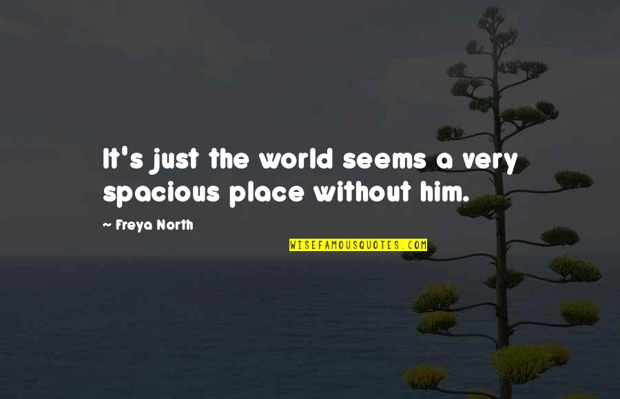 Spacious Quotes By Freya North: It's just the world seems a very spacious