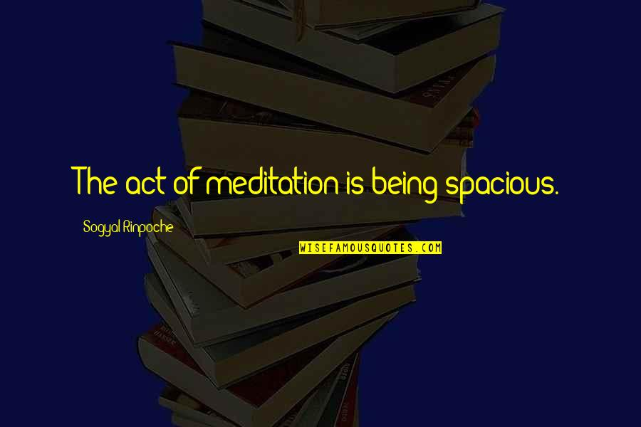 Spacious Quotes By Sogyal Rinpoche: The act of meditation is being spacious.