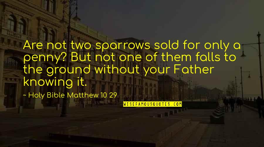 Sparrows Quotes By Holy Bible Matthew 10 29: Are not two sparrows sold for only a