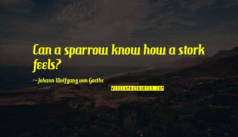 Sparrows Quotes By Johann Wolfgang Von Goethe: Can a sparrow know how a stork feels?