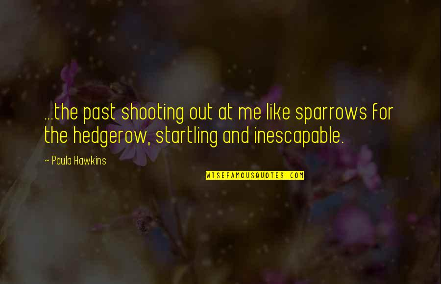 Sparrows Quotes By Paula Hawkins: ...the past shooting out at me like sparrows
