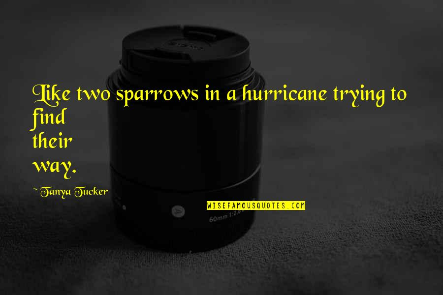 Sparrows Quotes By Tanya Tucker: Like two sparrows in a hurricane trying to