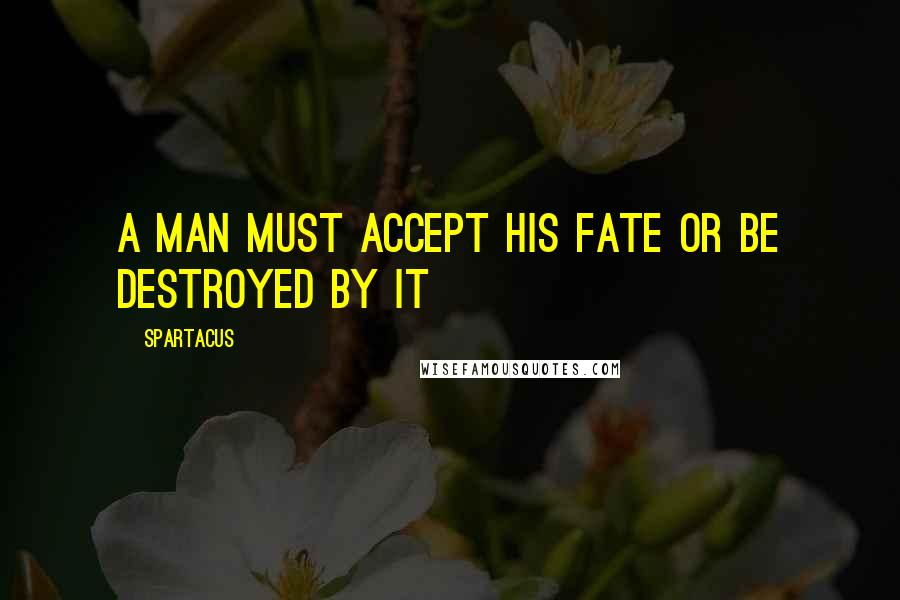 Spartacus quotes: A man must accept his fate or be destroyed by it