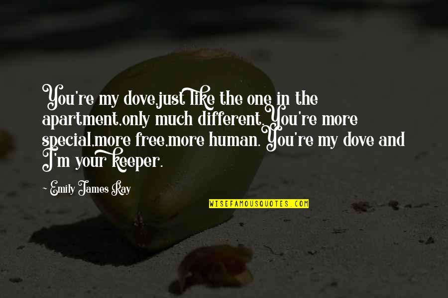 Special Love Quotes By Emily James Ray: You're my dove,just like the one in the