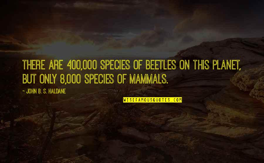Species's Quotes By John B. S. Haldane: There are 400,000 species of beetles on this