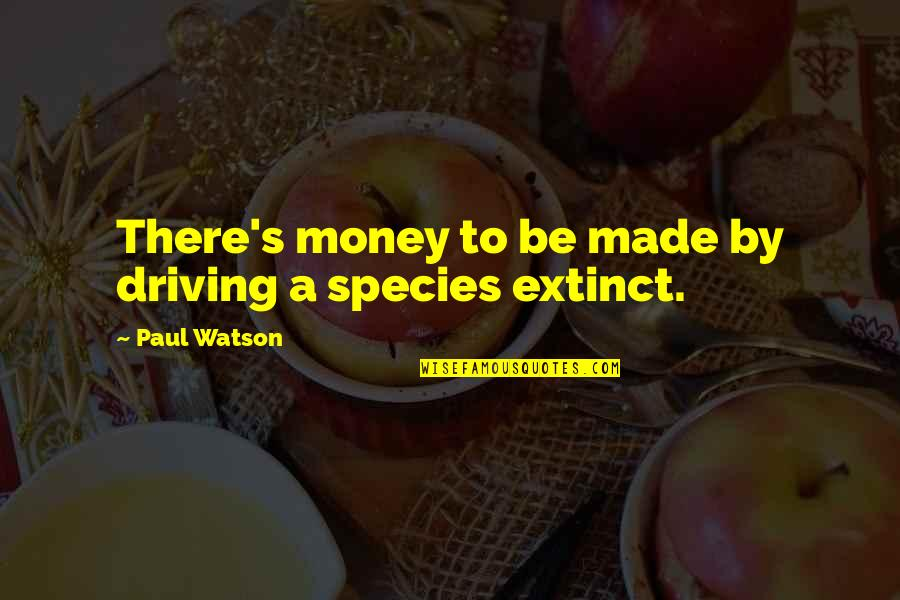 Species's Quotes By Paul Watson: There's money to be made by driving a