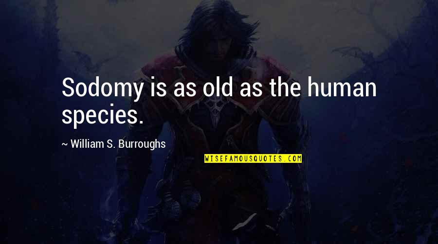 Species's Quotes By William S. Burroughs: Sodomy is as old as the human species.