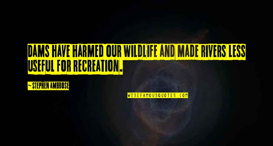 Speech Bubble Quotes By Stephen Ambrose: Dams have harmed our wildlife and made rivers