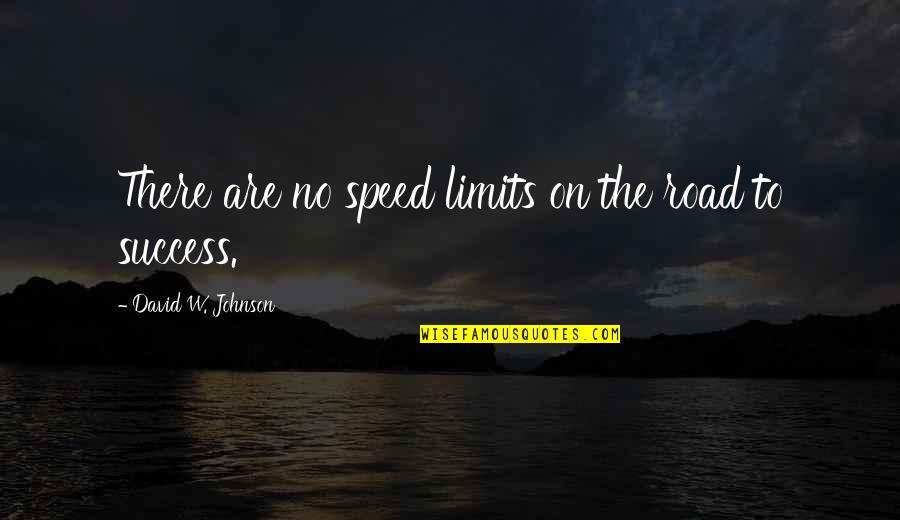 Speed'll Quotes By David W. Johnson: There are no speed limits on the road