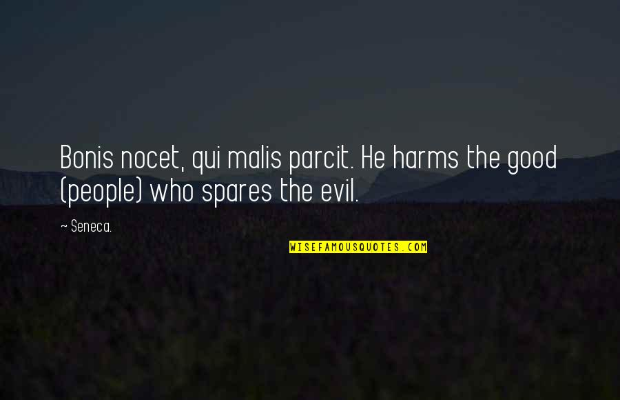 Spending Christmas With You Quotes By Seneca.: Bonis nocet, qui malis parcit. He harms the