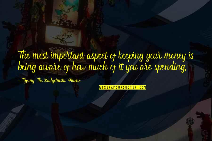 Spending Too Much Money Quotes By Tiffany 'The Budgetnista' Aliche: The most important aspect of keeping your money