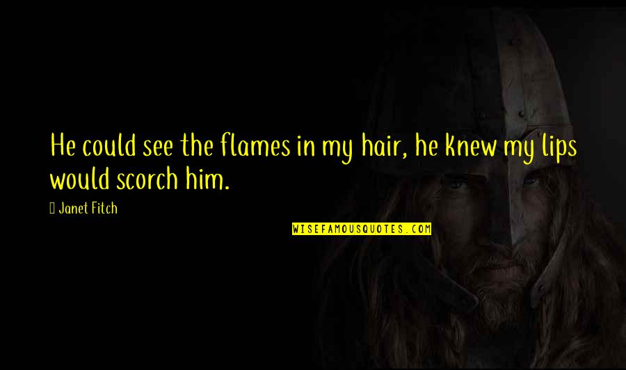 Speranta Moare Ultima Quotes By Janet Fitch: He could see the flames in my hair,