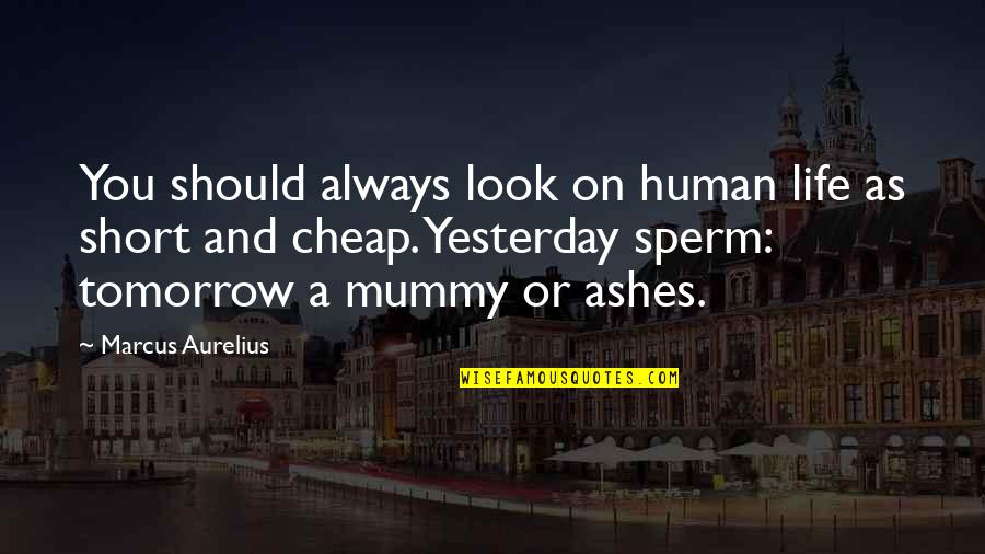 Sperm Quotes By Marcus Aurelius: You should always look on human life as