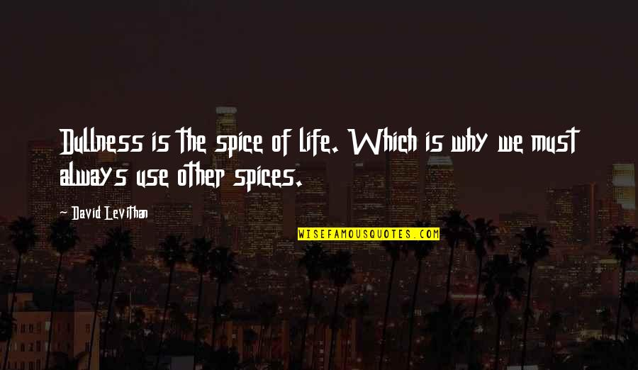 Spice It Up Quotes By David Levithan: Dullness is the spice of life. Which is