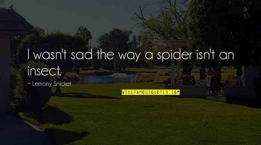 Spider Quotes By Lemony Snicket: I wasn't sad the way a spider isn't