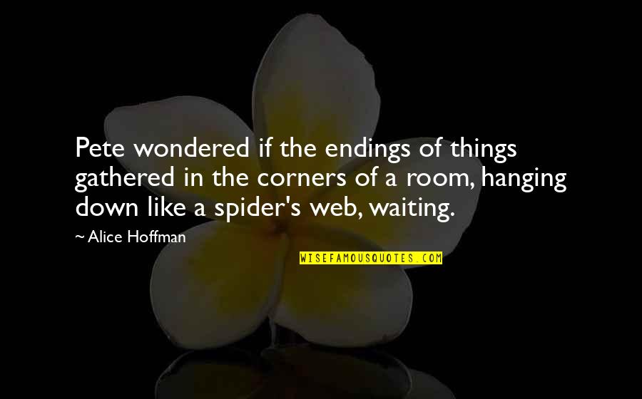 Spider Web Quotes By Alice Hoffman: Pete wondered if the endings of things gathered
