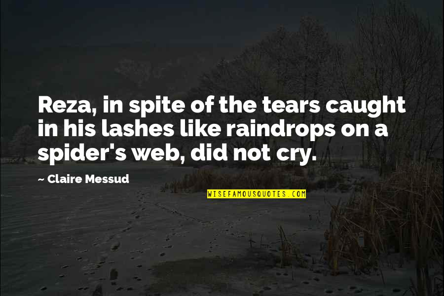 Spider Web Quotes By Claire Messud: Reza, in spite of the tears caught in