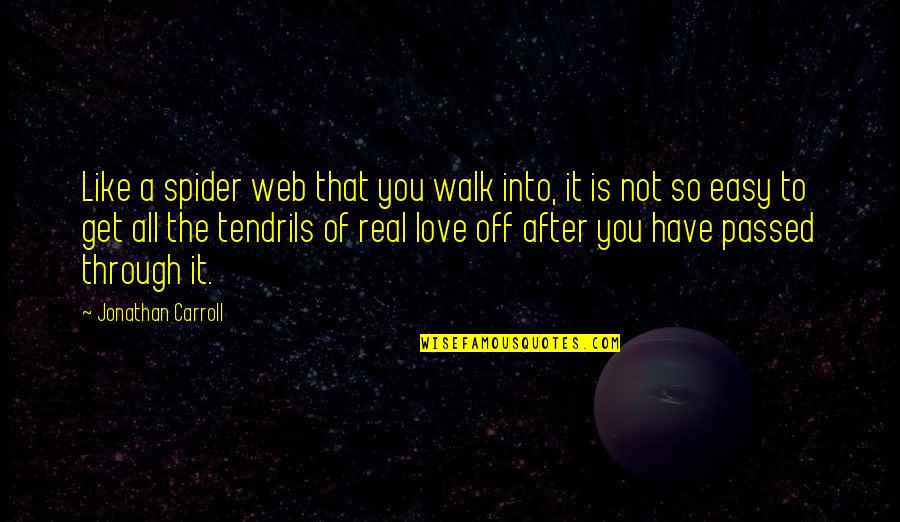 Spider Web Quotes By Jonathan Carroll: Like a spider web that you walk into,