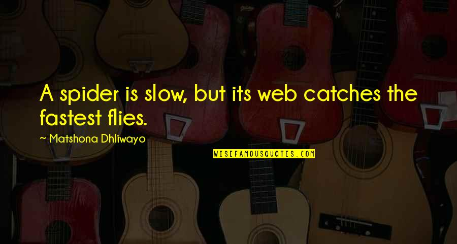 Spider Web Quotes By Matshona Dhliwayo: A spider is slow, but its web catches