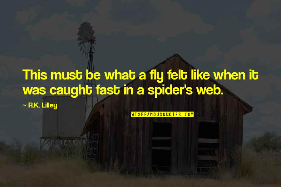 Spider Web Quotes By R.K. Lilley: This must be what a fly felt like