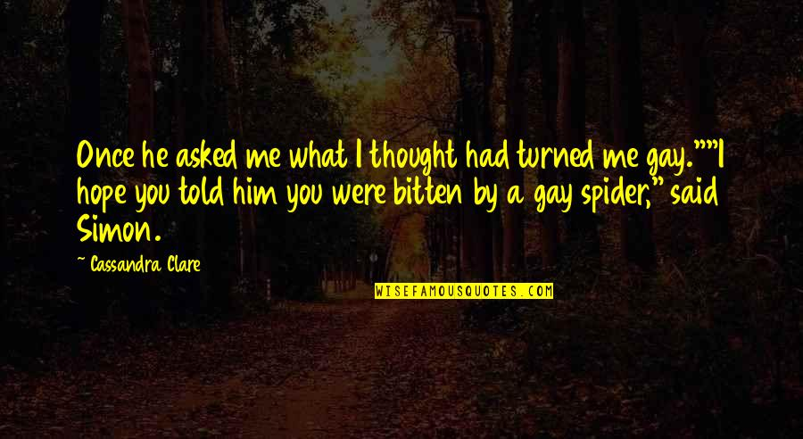 Spiderman 3 Quotes By Cassandra Clare: Once he asked me what I thought had