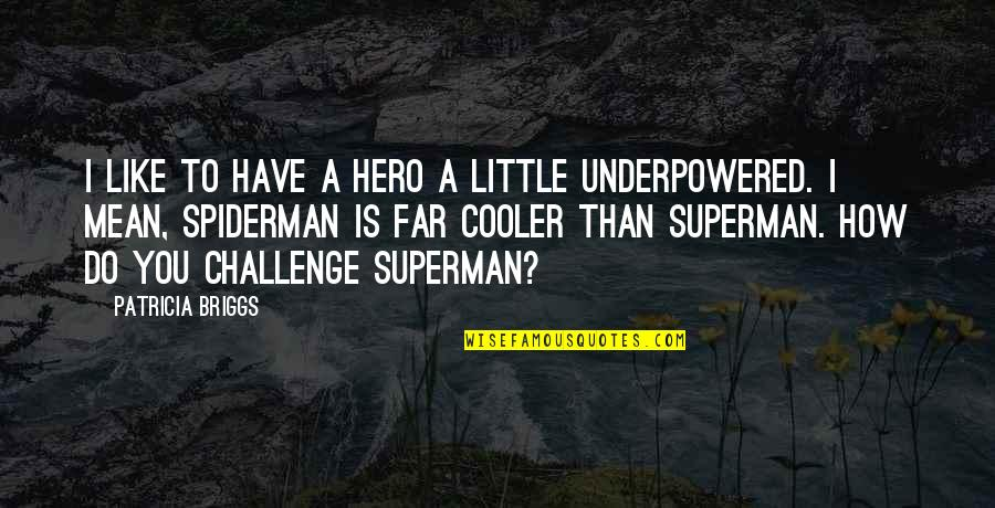 Spiderman 3 Quotes By Patricia Briggs: I like to have a hero a little