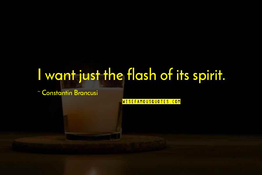 Spin Class Quotes By Constantin Brancusi: I want just the flash of its spirit.