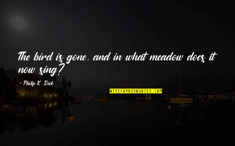 Spirituality And Death Quotes By Philip K. Dick: The bird is gone, and in what meadow