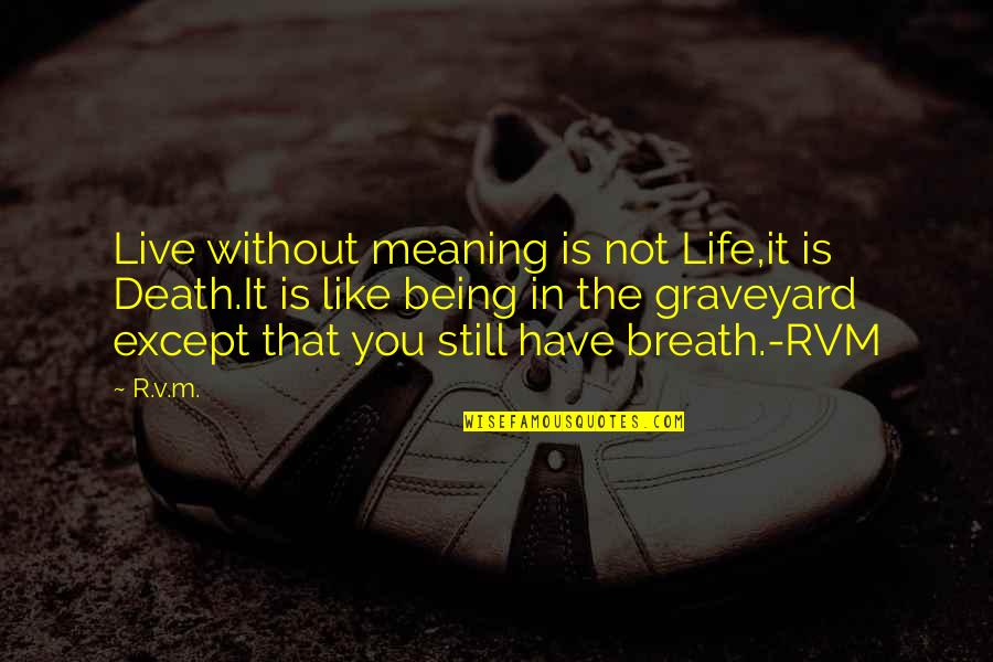 Spirituality And Death Quotes By R.v.m.: Live without meaning is not Life,it is Death.It