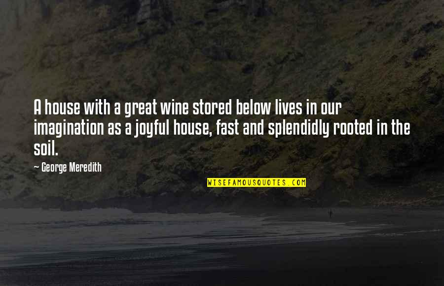 Splendidly Quotes By George Meredith: A house with a great wine stored below