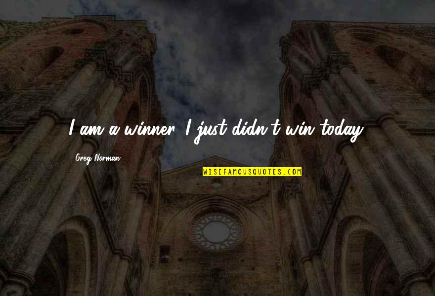 Sports Motivation Quotes By Greg Norman: I am a winner. I just didn't win