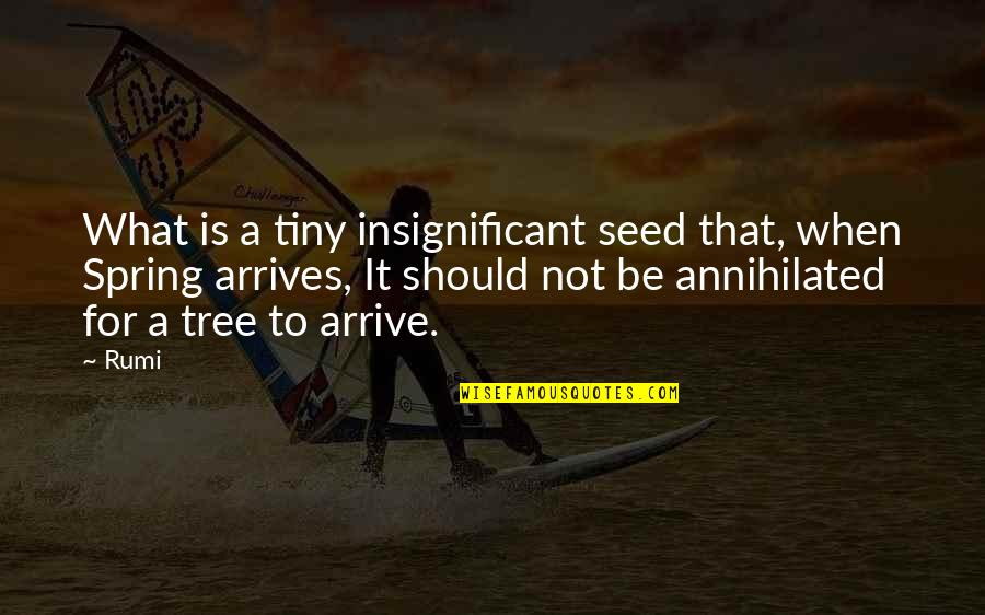 Spring Arrives Quotes By Rumi: What is a tiny insignificant seed that, when