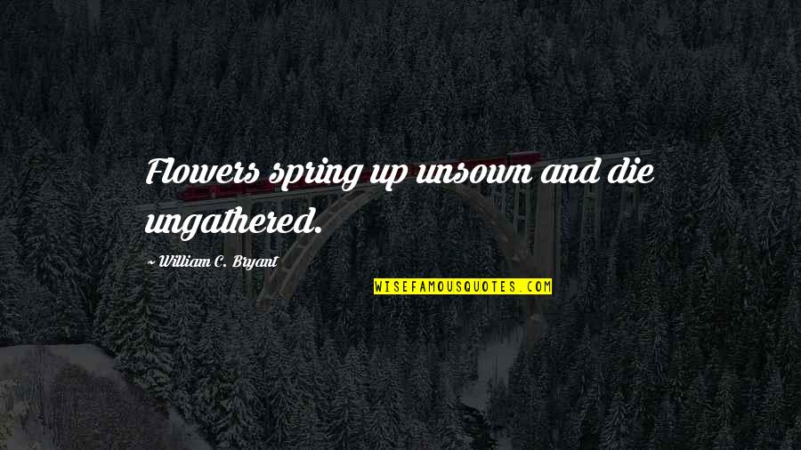 Spring Flowers Quotes By William C. Bryant: Flowers spring up unsown and die ungathered.