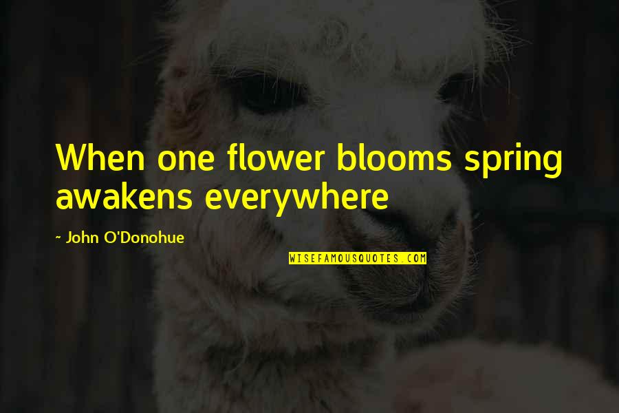 Spring'st Quotes By John O'Donohue: When one flower blooms spring awakens everywhere
