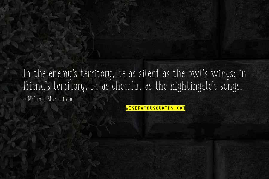 Squareness Quotes By Mehmet Murat Ildan: In the enemy's territory, be as silent as