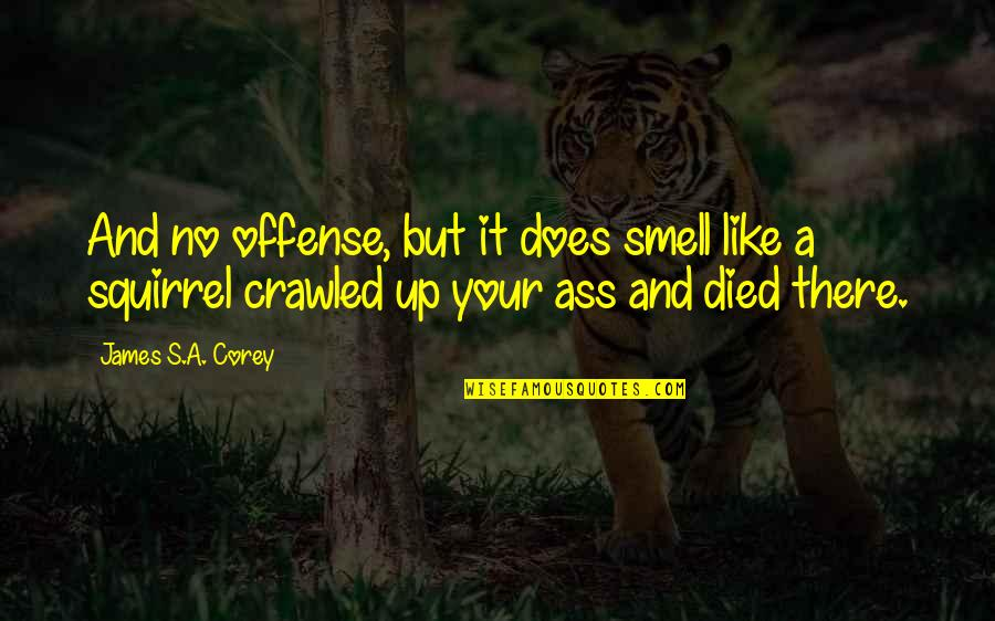 Squirrel Quotes By James S.A. Corey: And no offense, but it does smell like