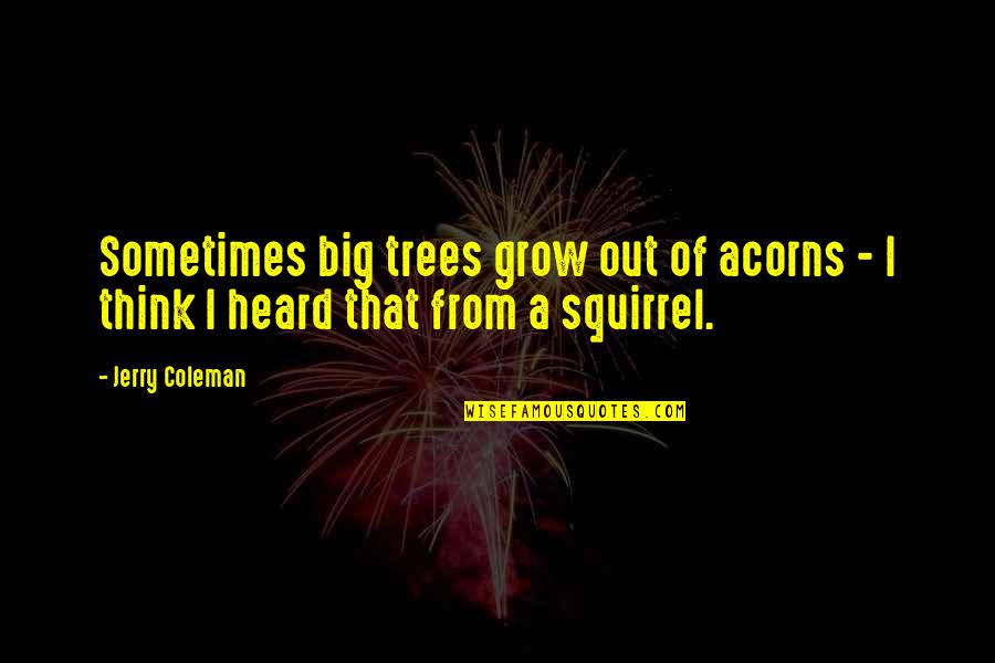Squirrel Quotes By Jerry Coleman: Sometimes big trees grow out of acorns -