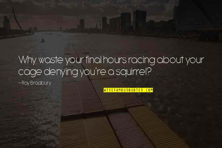 Squirrel Quotes By Ray Bradbury: Why waste your final hours racing about your