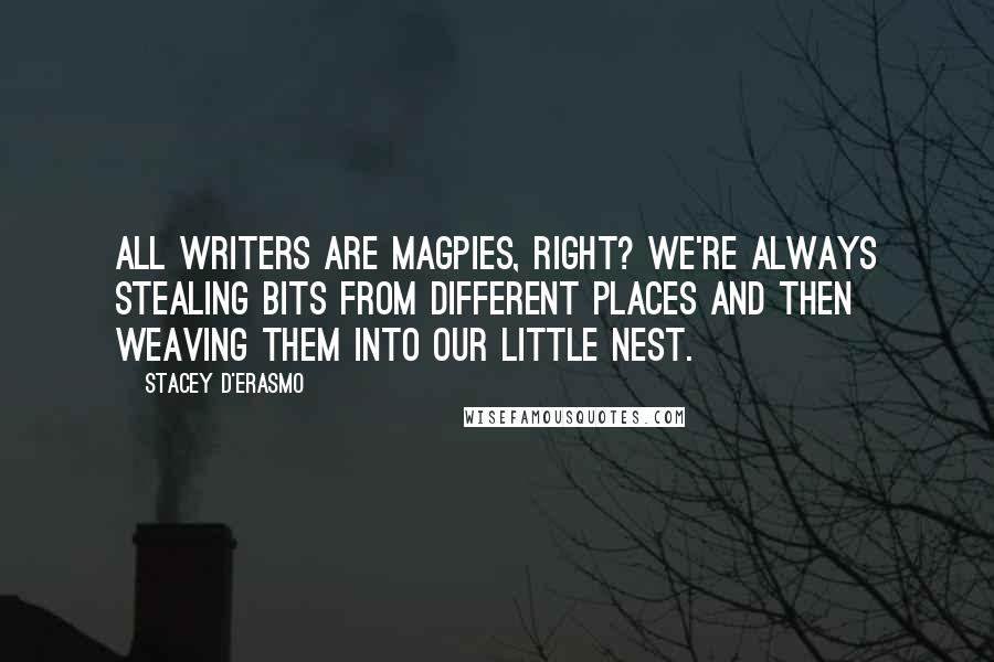 Stacey D'Erasmo quotes: All writers are magpies, right? We're always stealing bits from different places and then weaving them into our little nest.