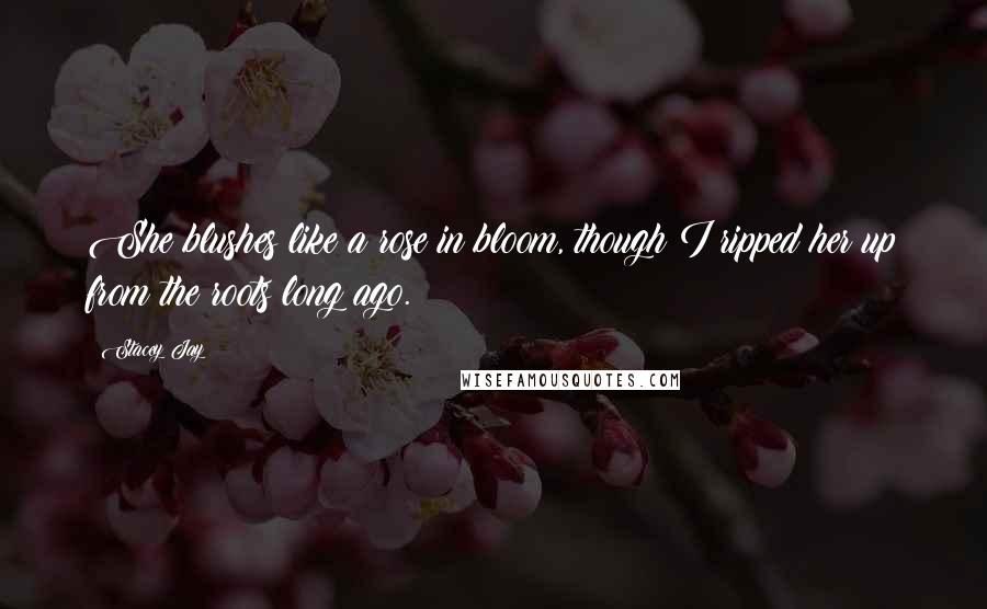 Stacey Jay quotes: She blushes like a rose in bloom, though I ripped her up from the roots long ago.