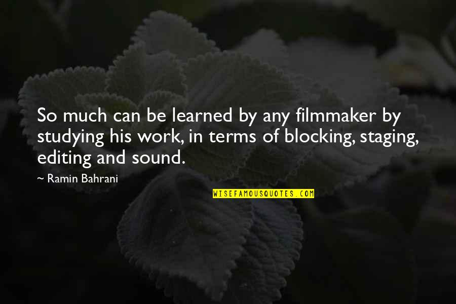 Staging Quotes By Ramin Bahrani: So much can be learned by any filmmaker