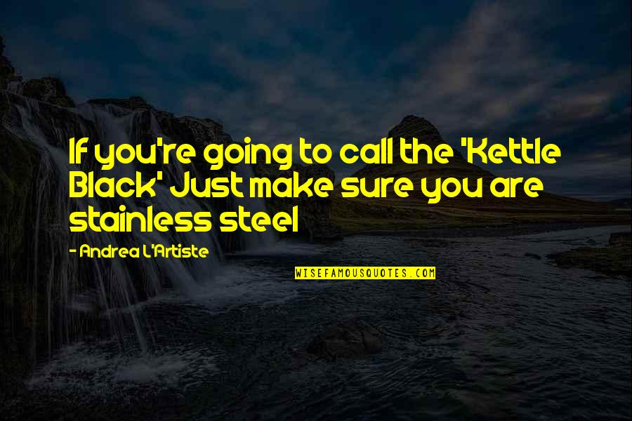 Stainless Steel Quotes By Andrea L'Artiste: If you're going to call the 'Kettle Black'